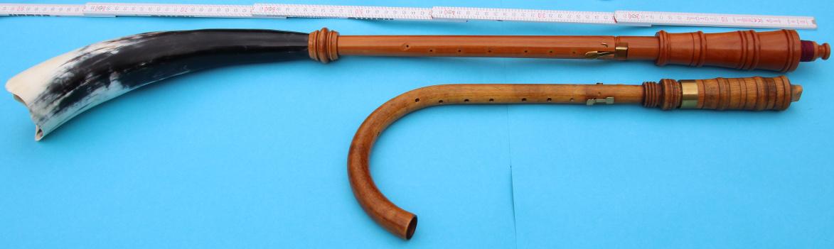 Animal horn instrument